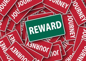 online surveys for cash reward