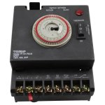 NSI-Industries-P1101FM-M-24-Hour-DPST-Swimming-Pool-Timer-with-Fireman-Switch-0