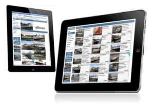 Bouwer van webshops, Website bouwer