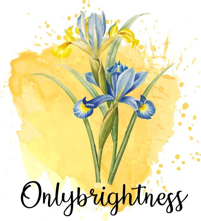 blogueuse toulousaine onlybrightness 1 - Accueil Blogueuse Toulousaine Onlybrightness