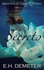 ebook cover(1)