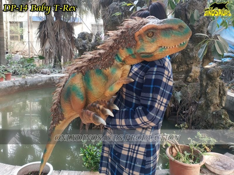 Baby Trex Dinosaur puppet around plants and pool