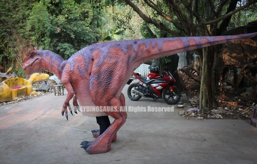 Custom Dilophosaurus Suit