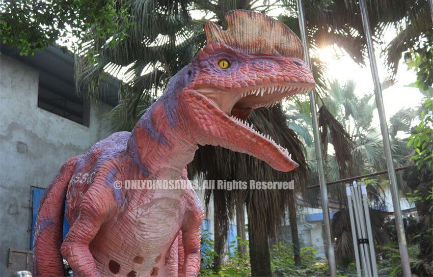 New add Dilophosaurus Costume