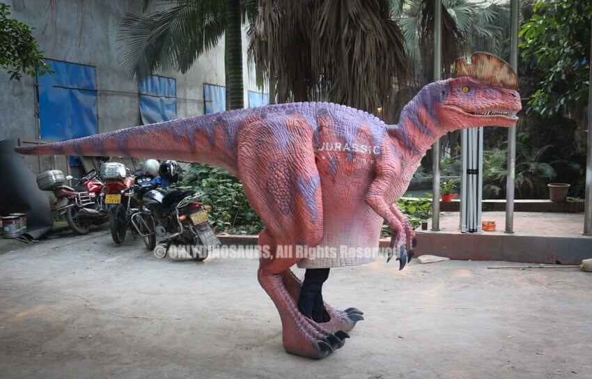 Pink Purple Dilophosaurus Suit