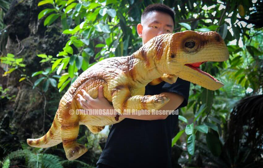Realistic Brachiosaurus Puppet