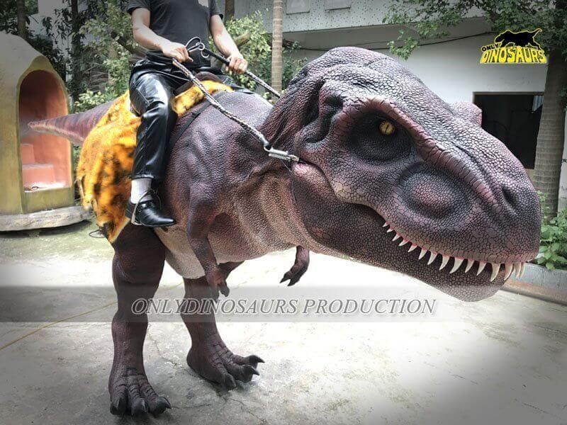 Realistic Riding Dinosaur Costume 6