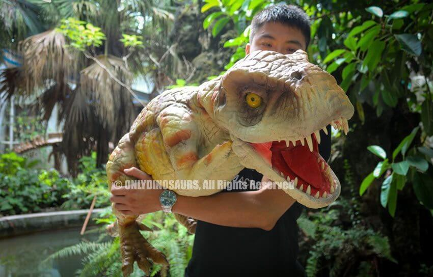 Realistic T Rex Hand Puppet