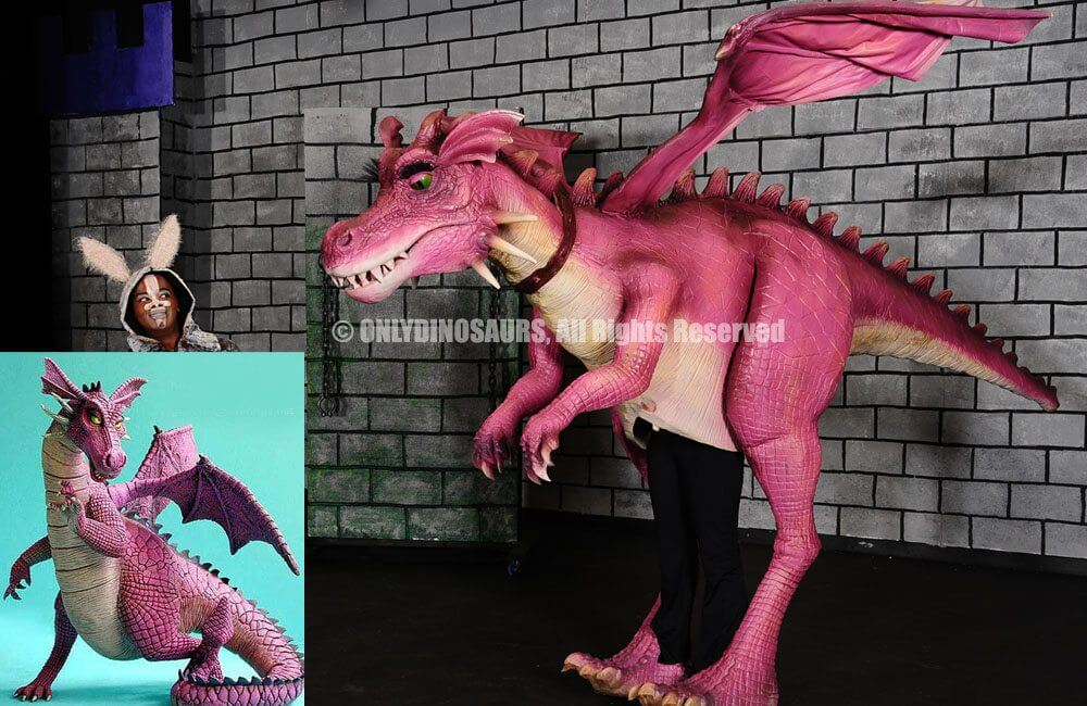 cartoon dragon suit