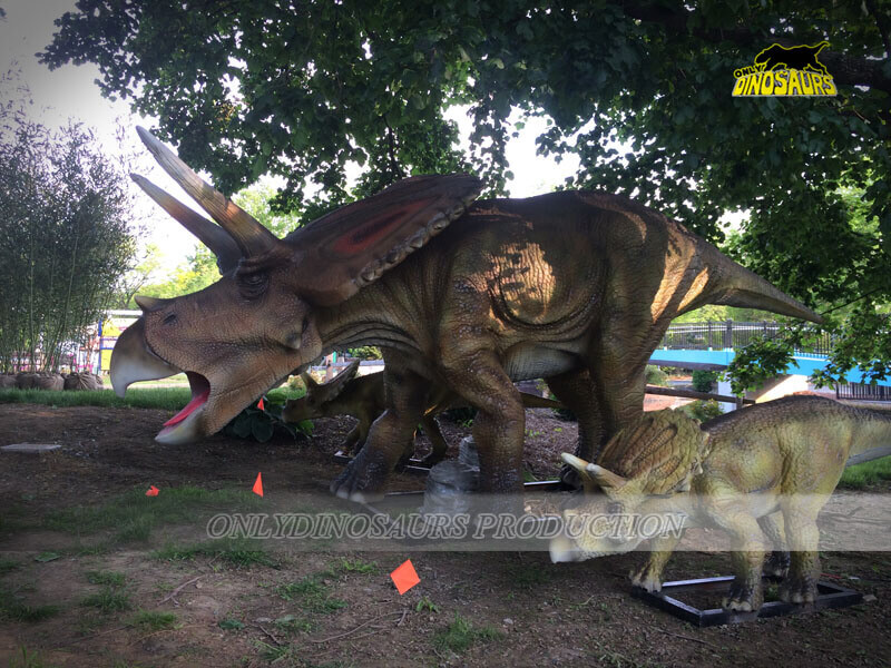 Animatronic Triceratops Family