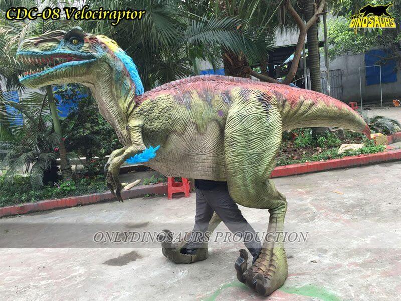 CDC 08 Custom Realistic Dinosaur Velociraptor Costume 2