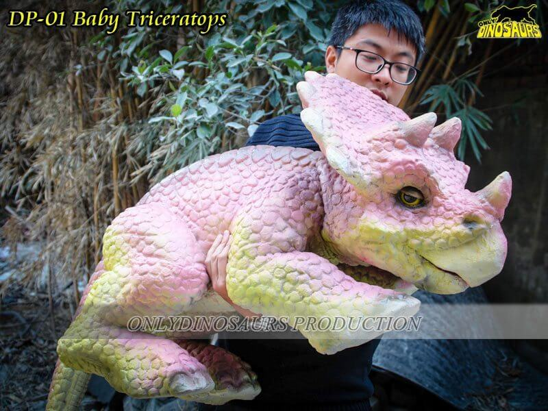 DP 01 BABY TRICERATOPS
