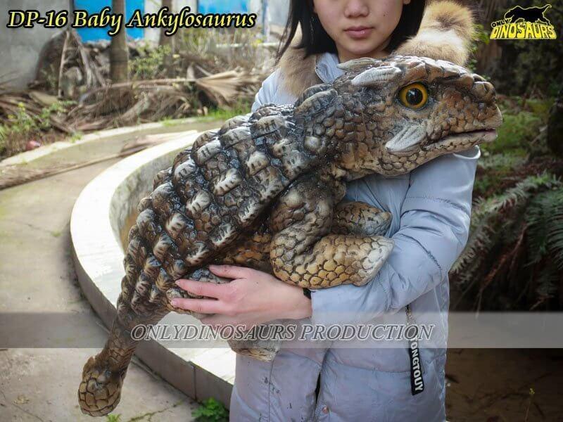 DP 16 Baby Ankylosaurus
