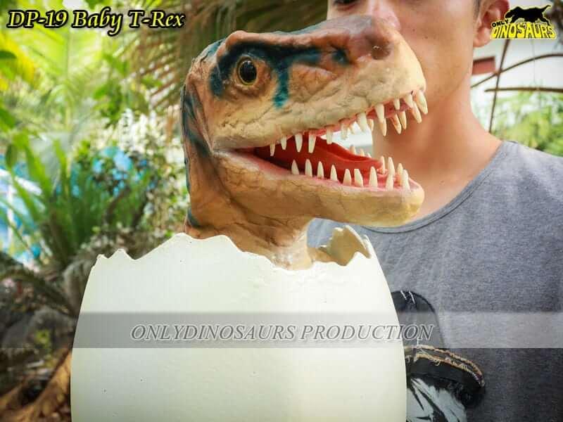 DP 19 Baby T Rex