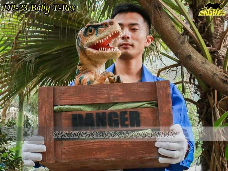 DP 23 Baby T Rex