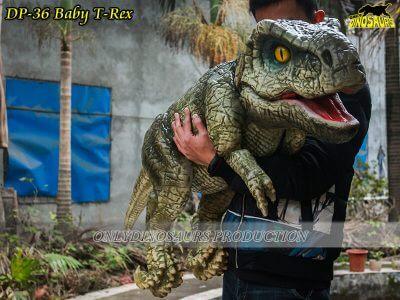 DP 36 Baby T Rex 400x300 1
