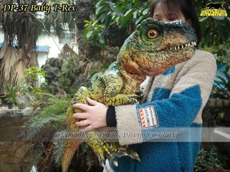 DP 37 Baby T Rex