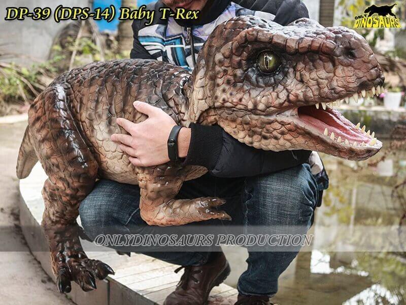 DP 39 Baby T Rex