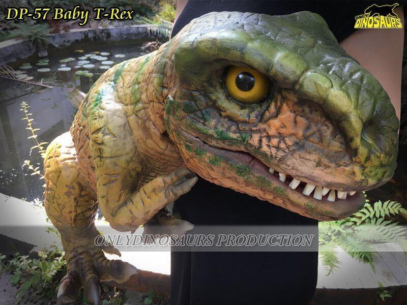 DP 57 Baby T Rex