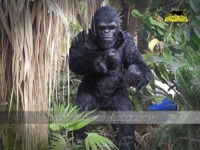 Gorilla Costume 2