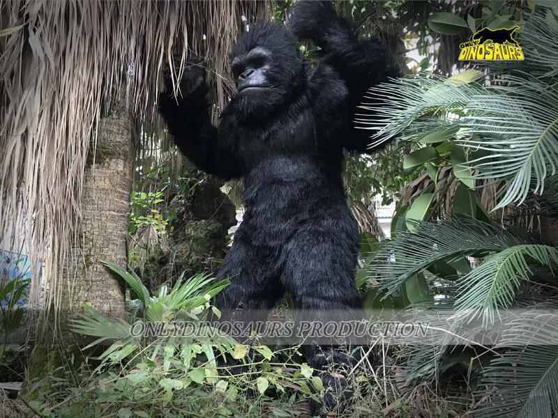 Gorilla Costume 3