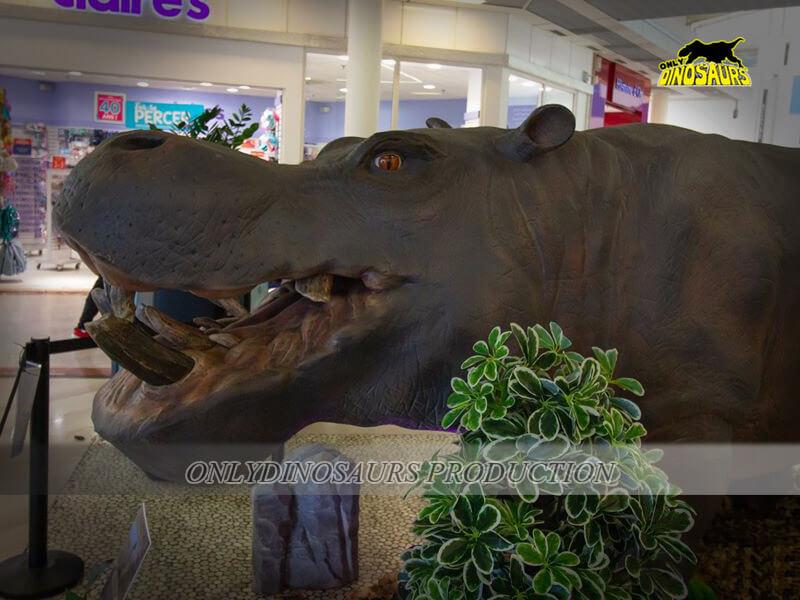 Jungle Animal Hippo 1