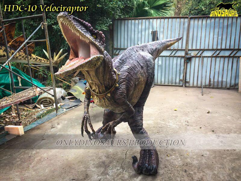 Lifelike Velociraptor Dinosaur Suit HDC 10