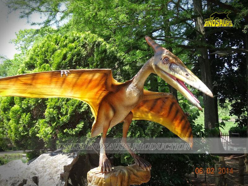 Pterosaur in Dinosaur Park