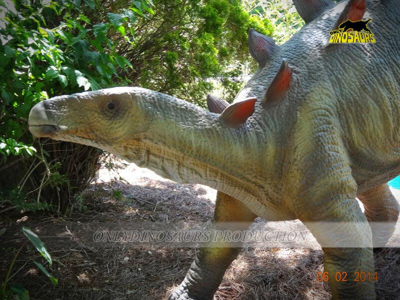 Stegosaurus in Animatronic Dinosaur Exhibits