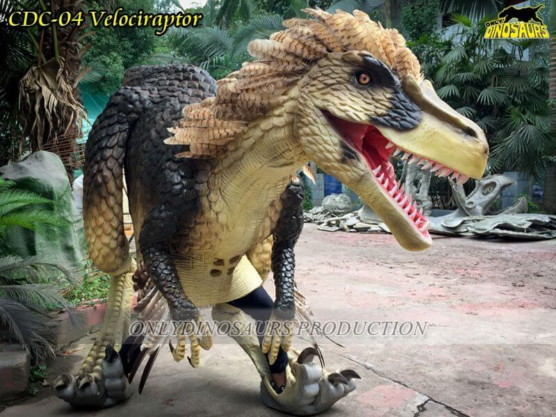 CDC 04 Custom Feathered Velociraptor Costume