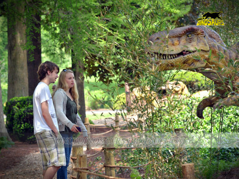 T Rex in Dinosaur Exhibition