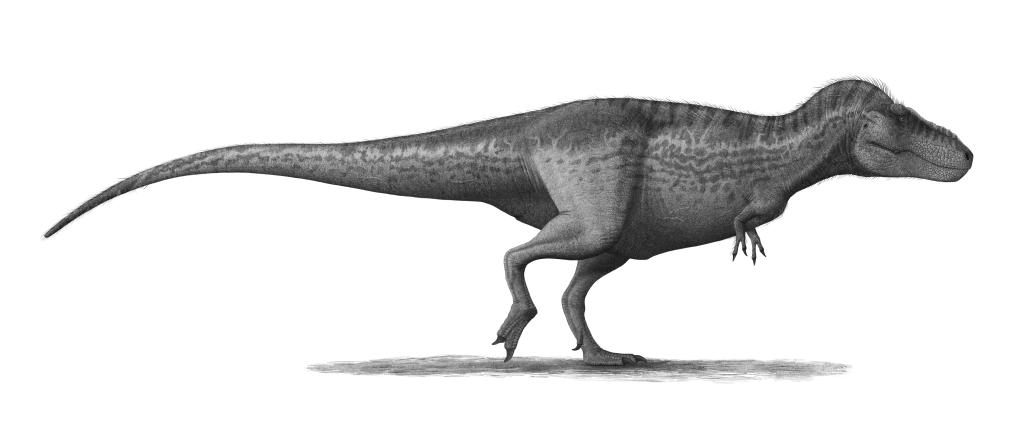 body-structure-of-dinosaurs