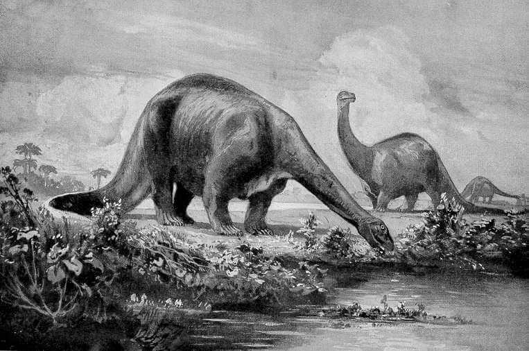 Brontosaurs old dinosaur
