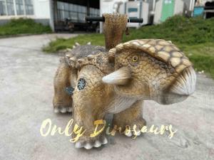 A Brown Baby Ankylosaurus Ride On the Ground