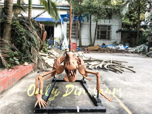 2 Meters Full Dinosaur Fossil Dimetrodon Skeleton for Exhibition2 2