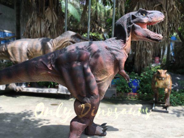 Adult-Dinosaur-Costume-T-Rex-Costume1-1