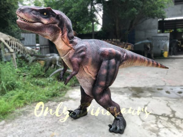 Adult-Dinosaur-Costume-T-Rex-Costume11-2