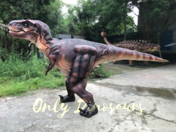 Adult-Dinosaur-Costume-T-Rex-Costume6-1