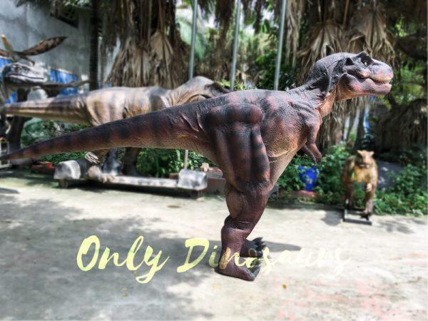 Adult Dinosaur Costume T Rex Costume6