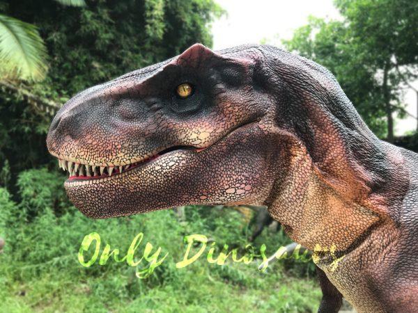 Adult-Dinosaur-Costume-T-Rex-Costume7-2