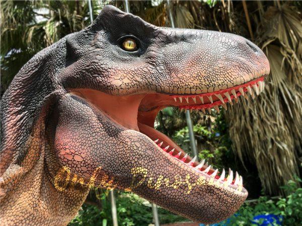 Adult Dinosaur Costume T Rex Costume7