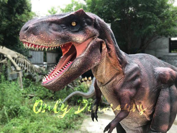 Adult-Dinosaur-Costume-T-Rex-Costume9-1