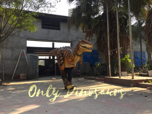 Adult-Jurassic-World-T-Rex-Costume-For-Wow-Party3-2
