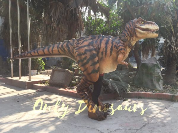 Adult-Jurassic-World-T-Rex-Costume-For-Wow-Party5-2