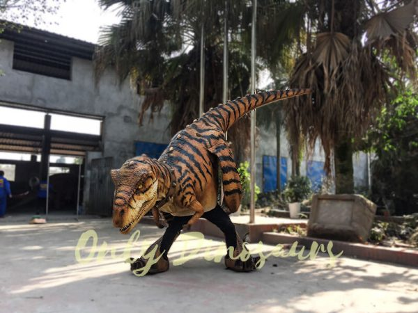 Adult Jurassic World T Rex Costume for Wow Party4