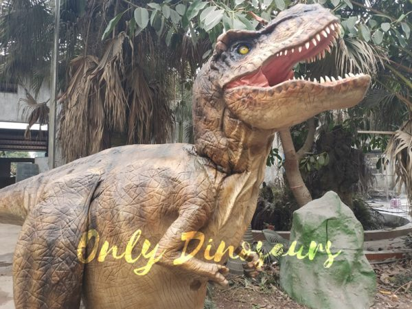 Adult-T-Rex-Costume-For-Wow-Party2-3