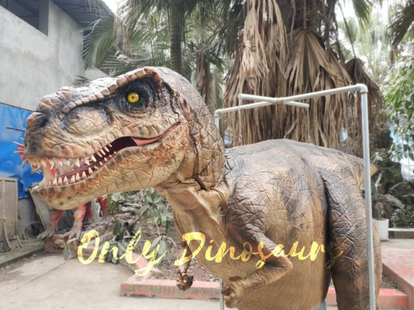 Adult-T-Rex-Costume-For-Wow-Party4-3