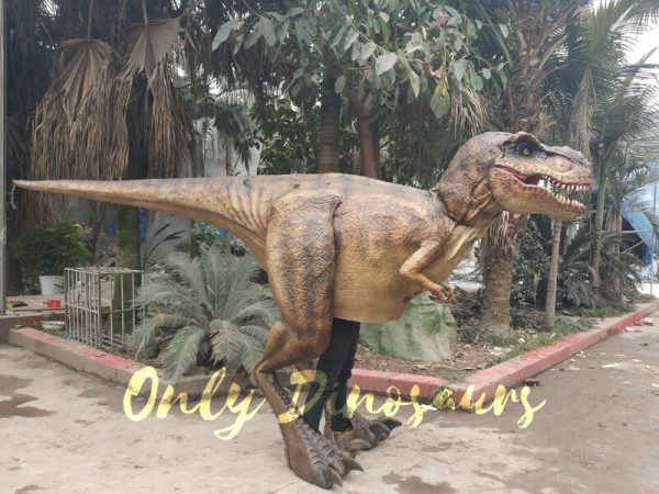 Adult-T-Rex-Costume-For-Wow-Party5-3