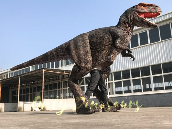 Adult-T-Rex-Dinosaur-Costume-For-Sale4-2