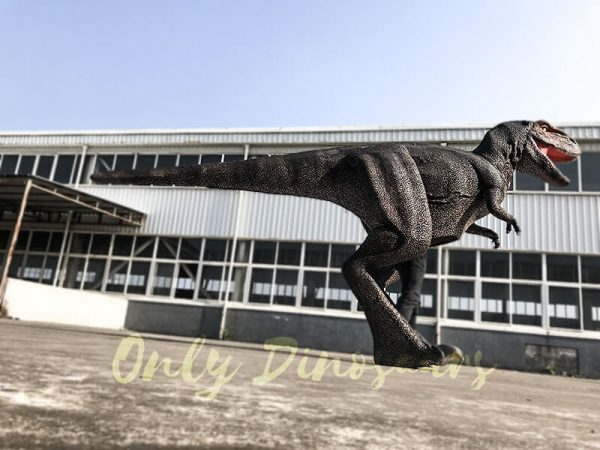 Adult T Rex Dinosaur Costume for Sale1 1
